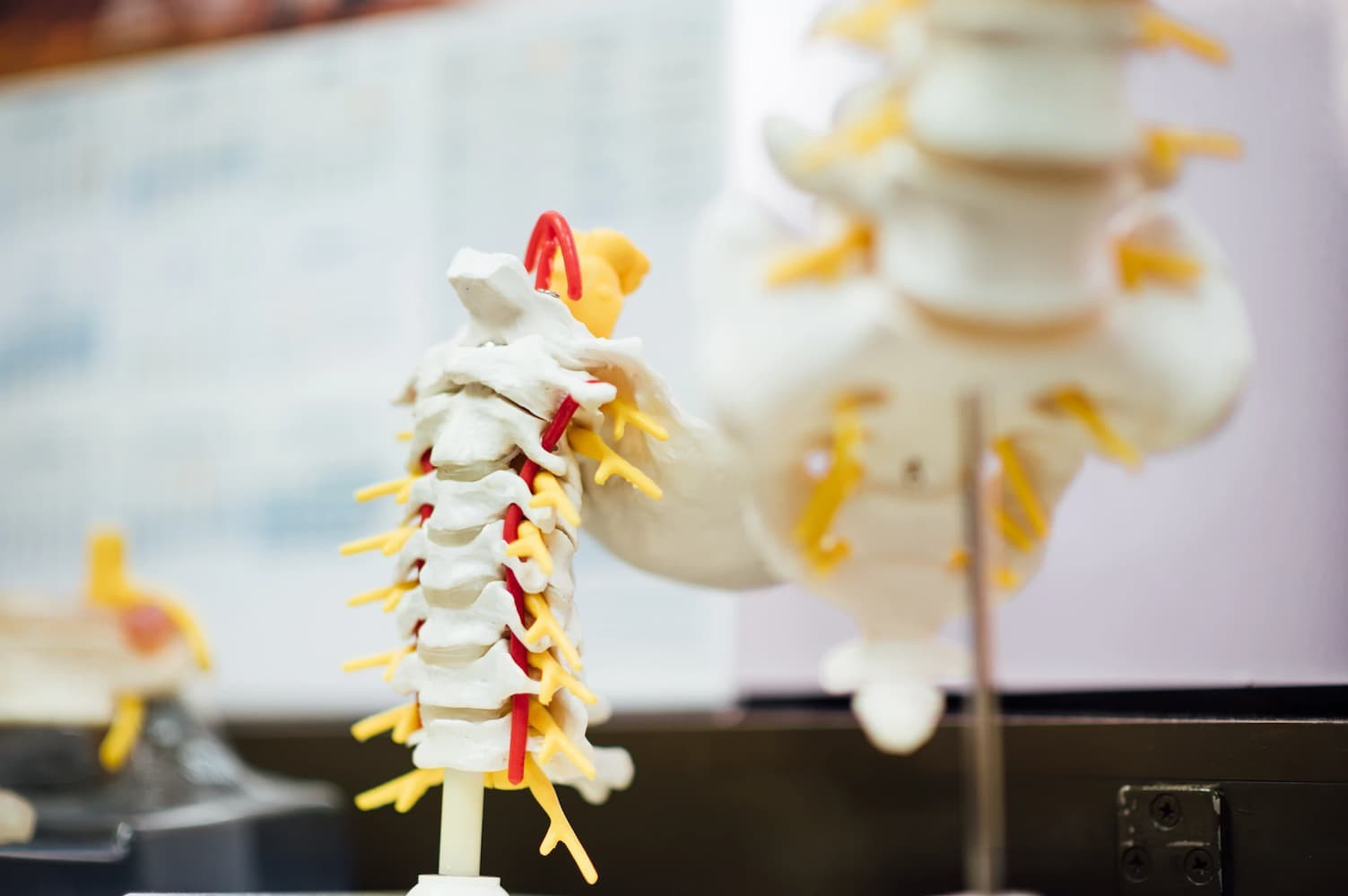 Better Access for People With Spinal Cord Injuries