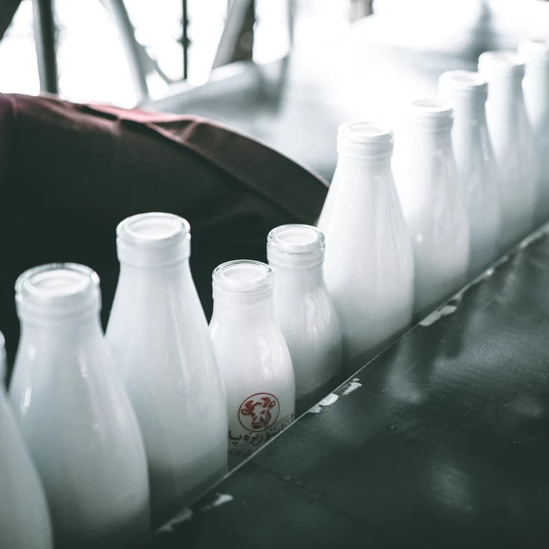 Understanding Calcium & What It Does to Your Body