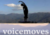 Voicemoves