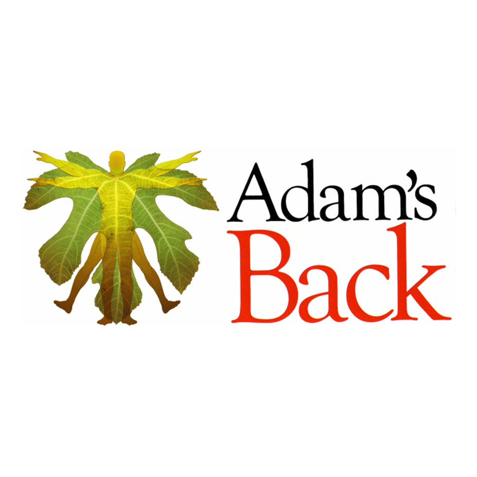 Dr Adam Mackey (Chiropractor), therapist on Natural Therapy Pages