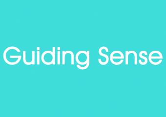 Guiding Sense