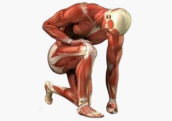 Body Beats Massage Therapy