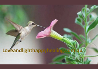 Caterina therapist on Natural Therapy Pages