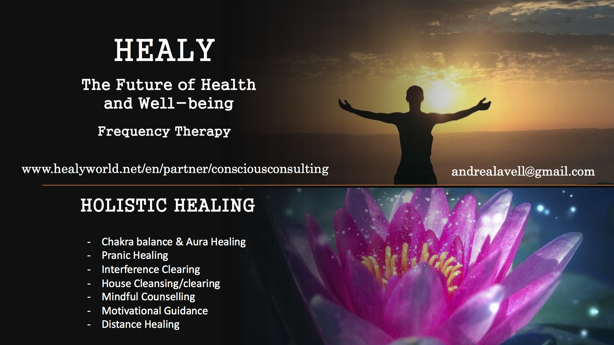 Holistic Healing - Andrea Lavell