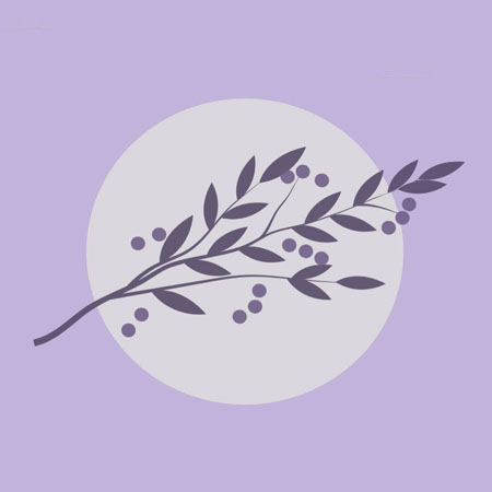 Pause and Smell the Lavender therapist on Natural Therapy Pages