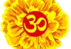 Suite Marigold therapist on Natural Therapy Pages