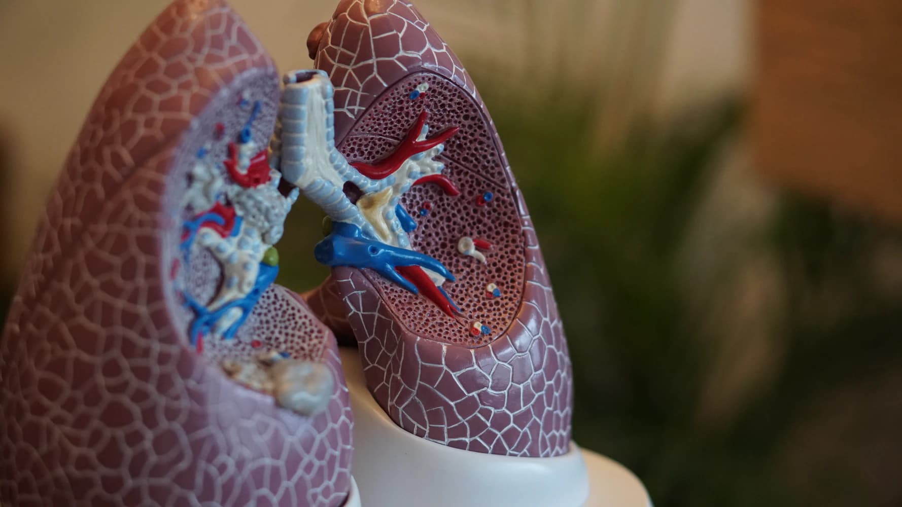 How COPD affects your lungs?