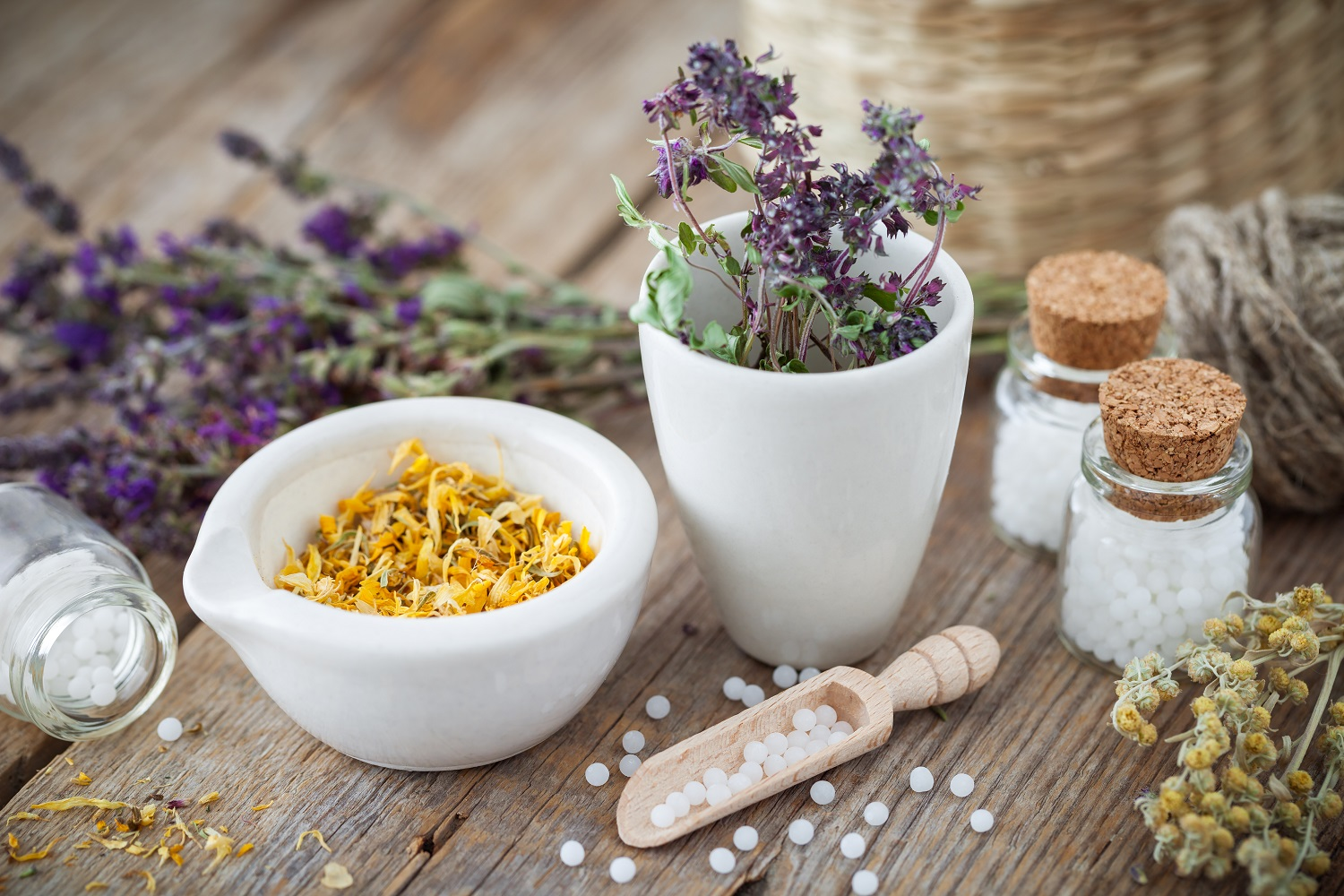 What is Homeopathy & the Principles of Homeopathy?