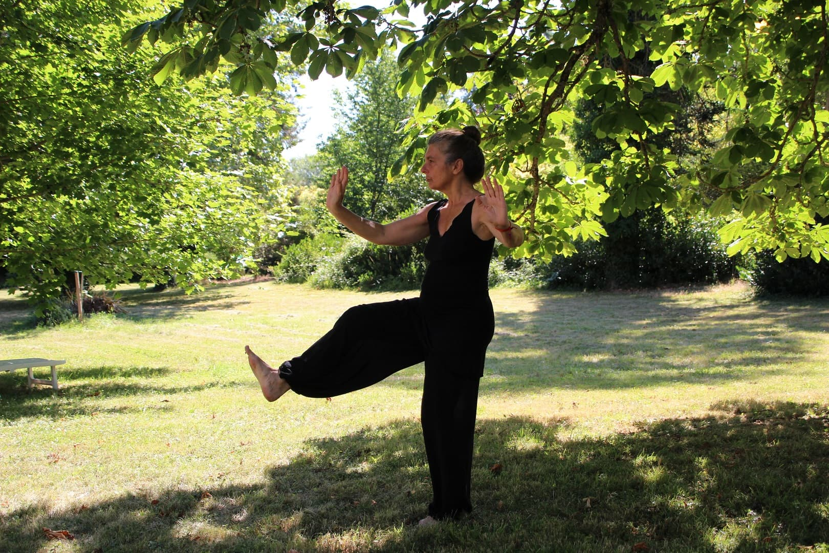 Qi Gong Courses in Australia