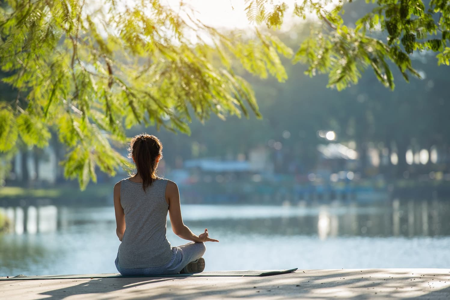 Online Mind Body Medicine Courses in Australia