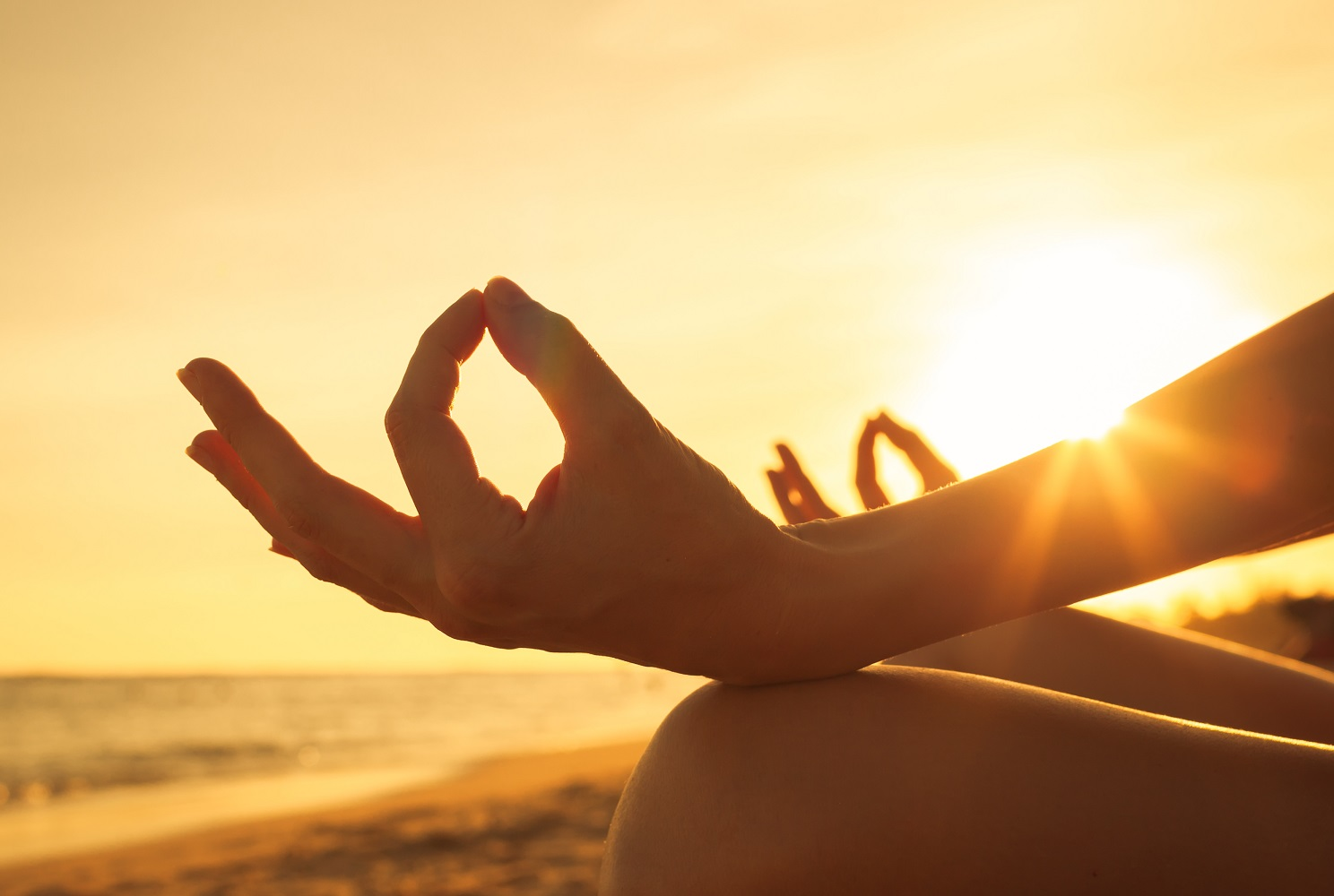 What is Core Energetics Therapy?